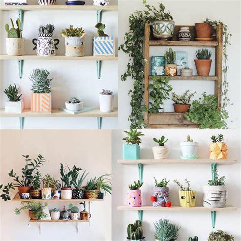 Como decorar cualquier habitacion con plantas de interior