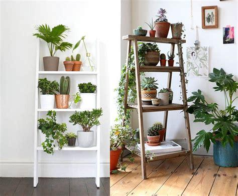 Como decorar cualquier habitacion con plantas de interior ...