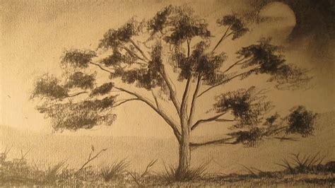 Cómo dibujar un árbol a lápiz para principiantes, dibujos ...