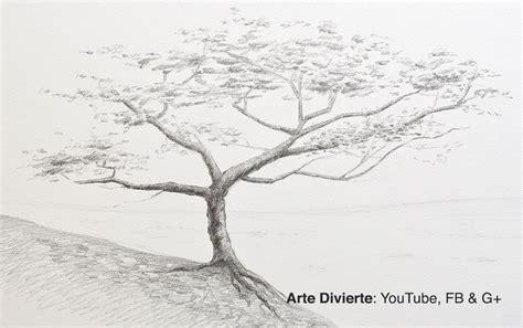 Cómo dibujar un árbol a lápiz   YouTube