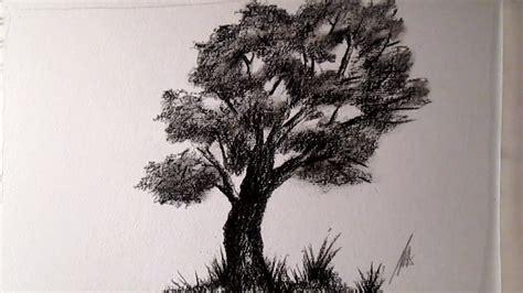 Cómo dibujar un árbol al Carboncillo, cómo dibujar árboles ...