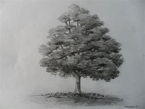 Como dibujar un árbol paso a paso, bien fácil. Bases para ...