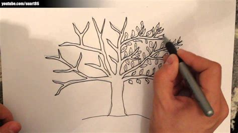 Como dibujar un arbol   YouTube