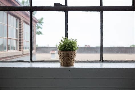 Cómo eliminar la humedad de las paredes y prevenir su ...