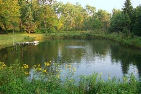 Cómo es un estanque natural y los animales que viven en él