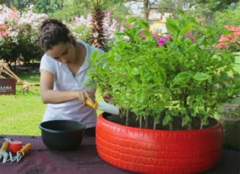 Cómo hacer macetas con neumáticos | Plantas
