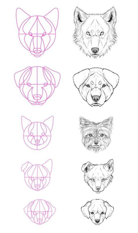 Como Hacer un Boceto: Animales: Caras, Oreja y Ojos de Perro
