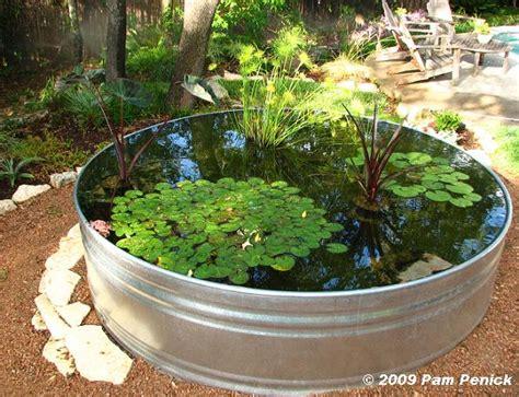 Cómo hacer un estanque acuático con plantas y peces ...