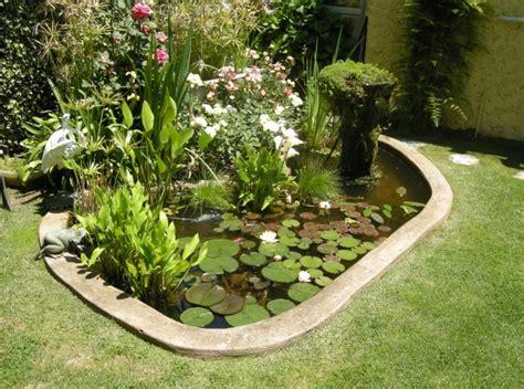 como hacer un estanque con plantas, peces, tortugas....