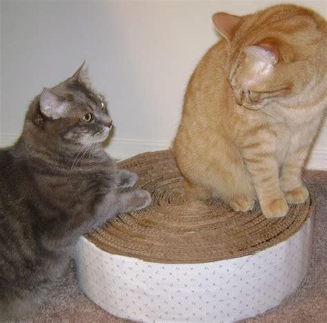 Cómo hacer un rascador de cartón circular para tu gato