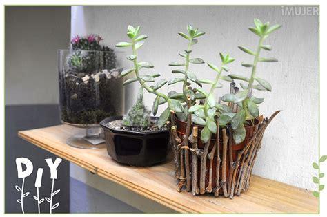 Cómo hacer una maceta más natural para tus plantas   VIX