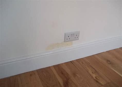 Cómo reparar humedades en las paredes   pisos Al día ...