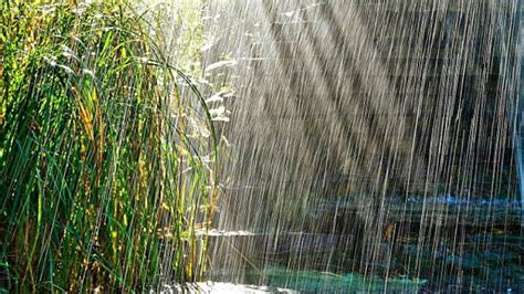 ¿Cómo se forma la lluvia?