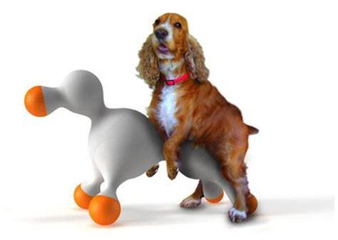 ¿Cómo se reproducen los perros? Explicado paso a paso
