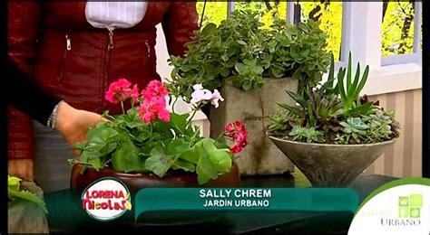 como sembrar plantas en maceta - YouTube