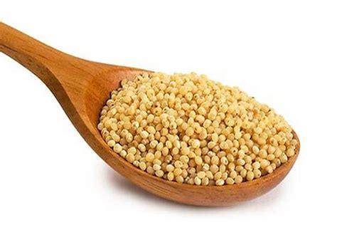Cómo usar el mijo en la dieta para adelgazar   Tienda de ...