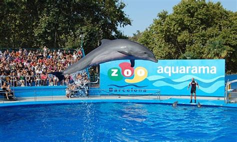 Compra Entradas Zoo Online –Barcelona   TicketsNET