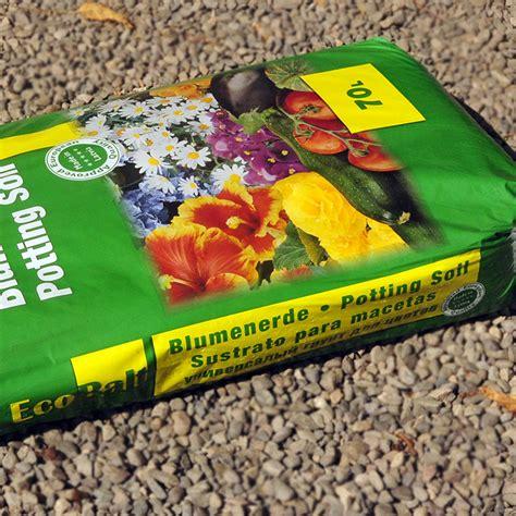 Comprar Plantas De Interior Online. Amazing Plantas ...