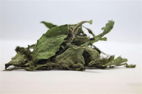 Comprar stevia 100% natural   plantasParaCurar.com