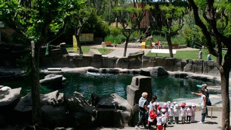 Coneix el Zoo   Zoo Barcelona