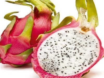 Conheça as frutas exóticas   GUIA A Z   Viva Saúde