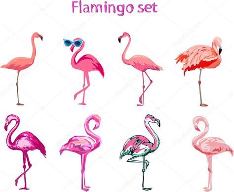 conjunto de flamencos de dibujos animados — Vector de ...