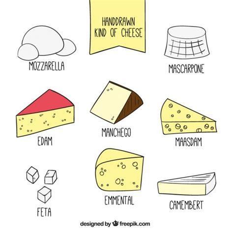 Conjunto de tipos de queso dibujados a mano | Descargar ...