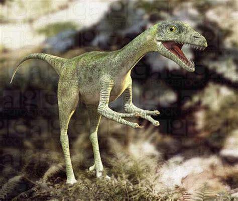 Conoce los tipos de Dinosaurios que existieron. - Taringa!