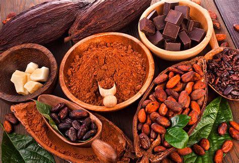 Conoce Mckenzie93   Venta en línea de cacao y chocolate ...