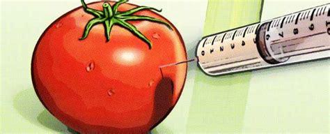 Consecuencias de los alimentos transgénicos