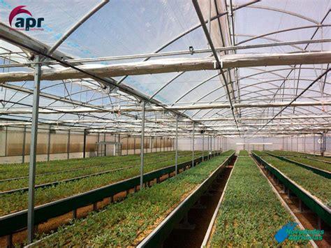 Construcción de Invernaderos Viveros en Chile