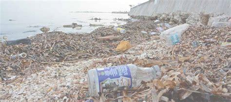 Contaminación Ambiental: ¿Qué es y cómo podemos reducirla?