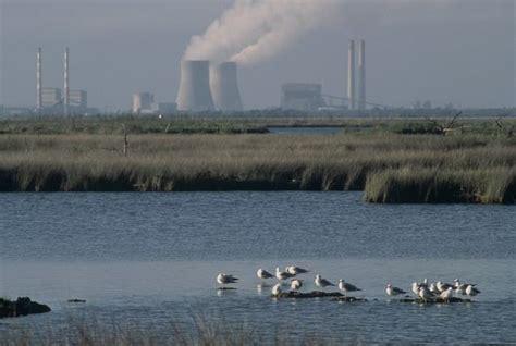 Contaminación del agua: Qué es, causas, consecuencias y ...