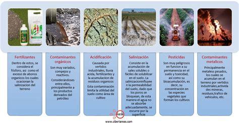 Contaminación del suelo – Química 2   CiberTareas