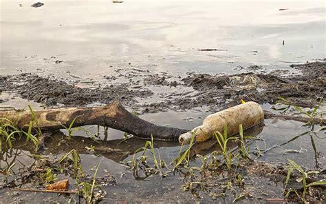 Contaminación Hídrica - Información y Características