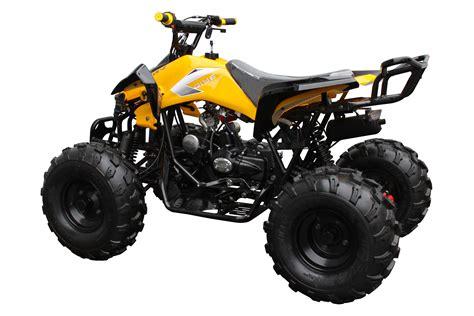 Coolster 3125 C 2 125cc ATV   3D Powersports