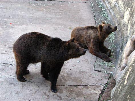 Cordoba Zoo Sarmiento Park Argentina 007
