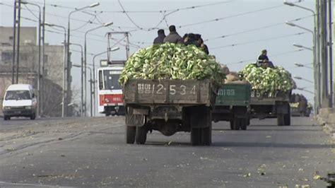 Corea del Norte / Vegetales / Agricultura / 2003 | HD ...