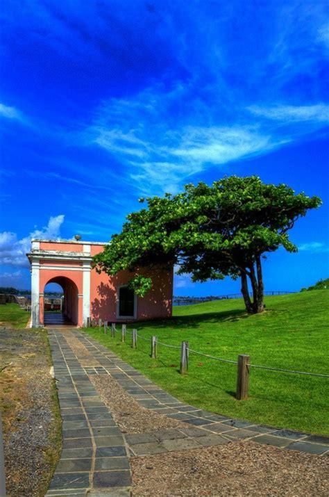 Cosas maravillosas del mundo - Picmia