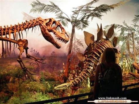 Cosas que talvez no sabias sobre los Dinosaurios   Info ...