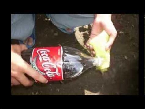 Cosas Raras, Extrañas, Curiosas e Interesantes 5 - YouTube
