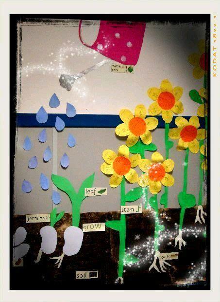 crecimiento de las plantas para niños | Ciencias | Pinterest