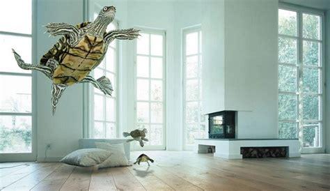 Criar tortugas en casa