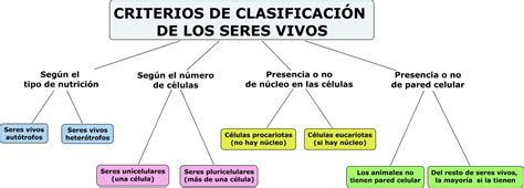 Criterios de clasificacion