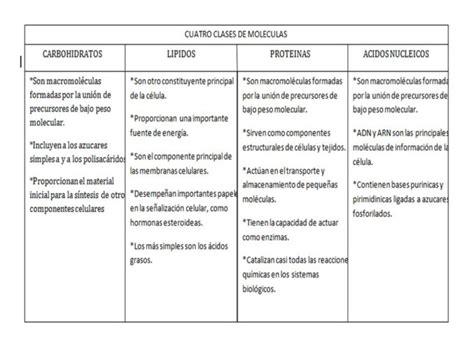 Cuadros comparativos de Biomoléculas   Cuadro Comparativo