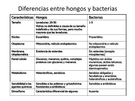 Cuadros comparativos entre Hongos y Bacterias | Cuadro ...