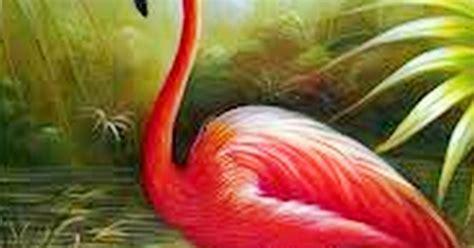 Cuadros, pinturas, oleos: Aves cuadros al óleo
