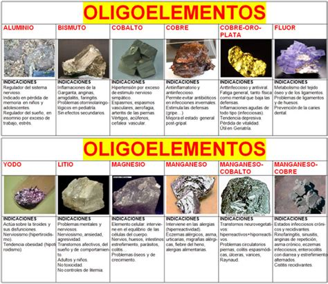 Cuadros sinópticos sobre bioelementos | Cuadro Comparativo