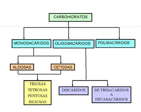 Cuadros sinópticos sobre carbohidratos | Cuadro Comparativo