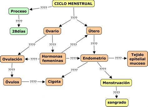 Cuadros sinópticos sobre el ciclo menstrual | Cuadro ...